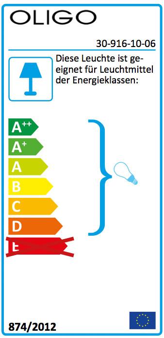 Oligo Schienenstrahler ICE CHECK-IN 230V 30-916-10-06 inkl.Leuchtmittel SH 34861